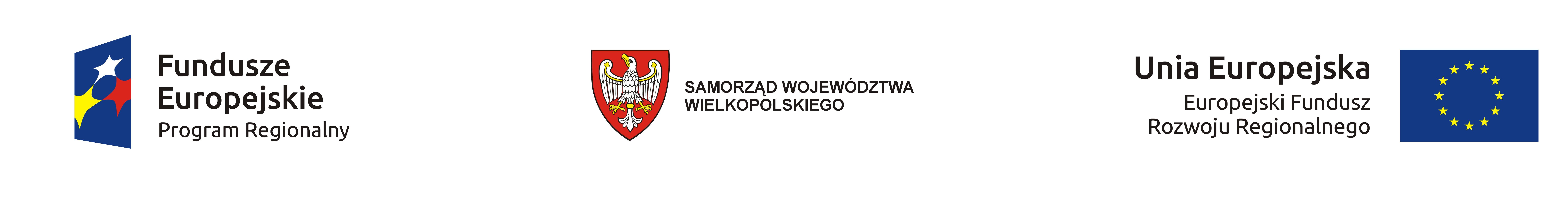 Europejski Fundusz Rozwoju Regionalnego, Samorząd Województwa Wielkopolskiego